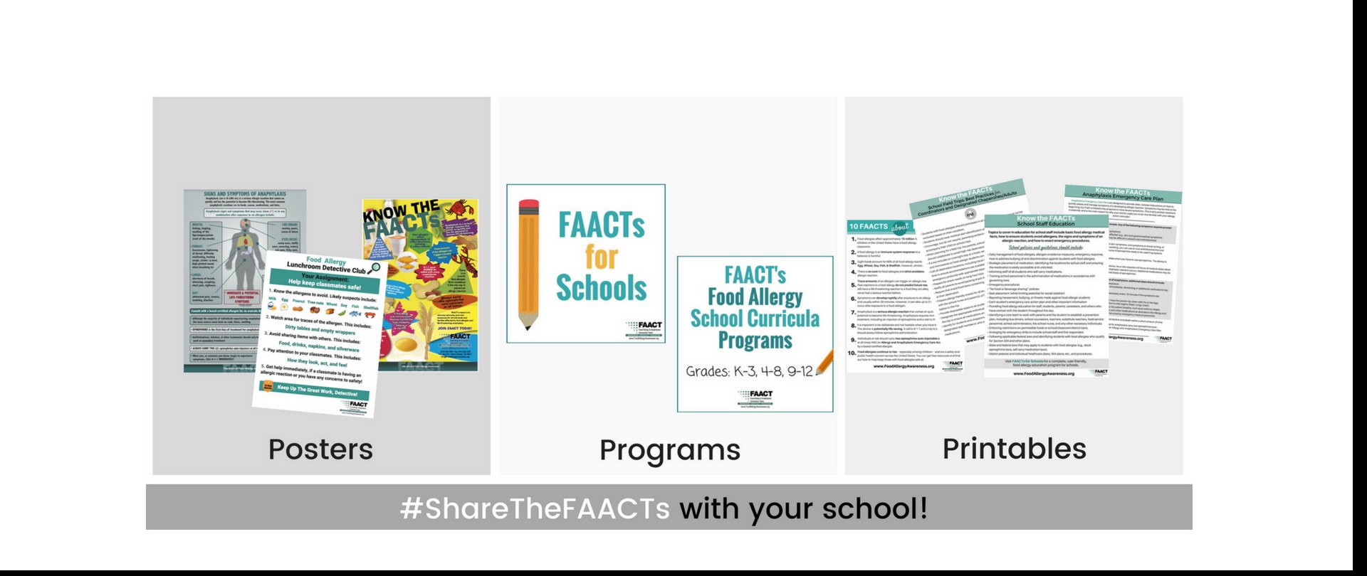 FAACTs for Schools Program